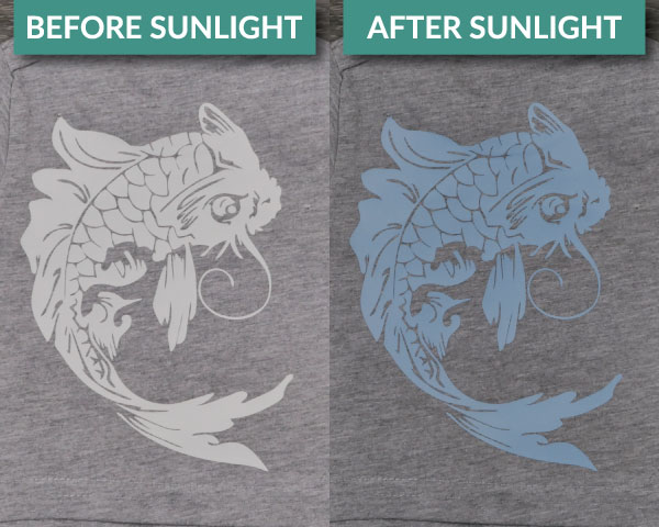 FashionFlex Light-Sensitive in a fish before and after light